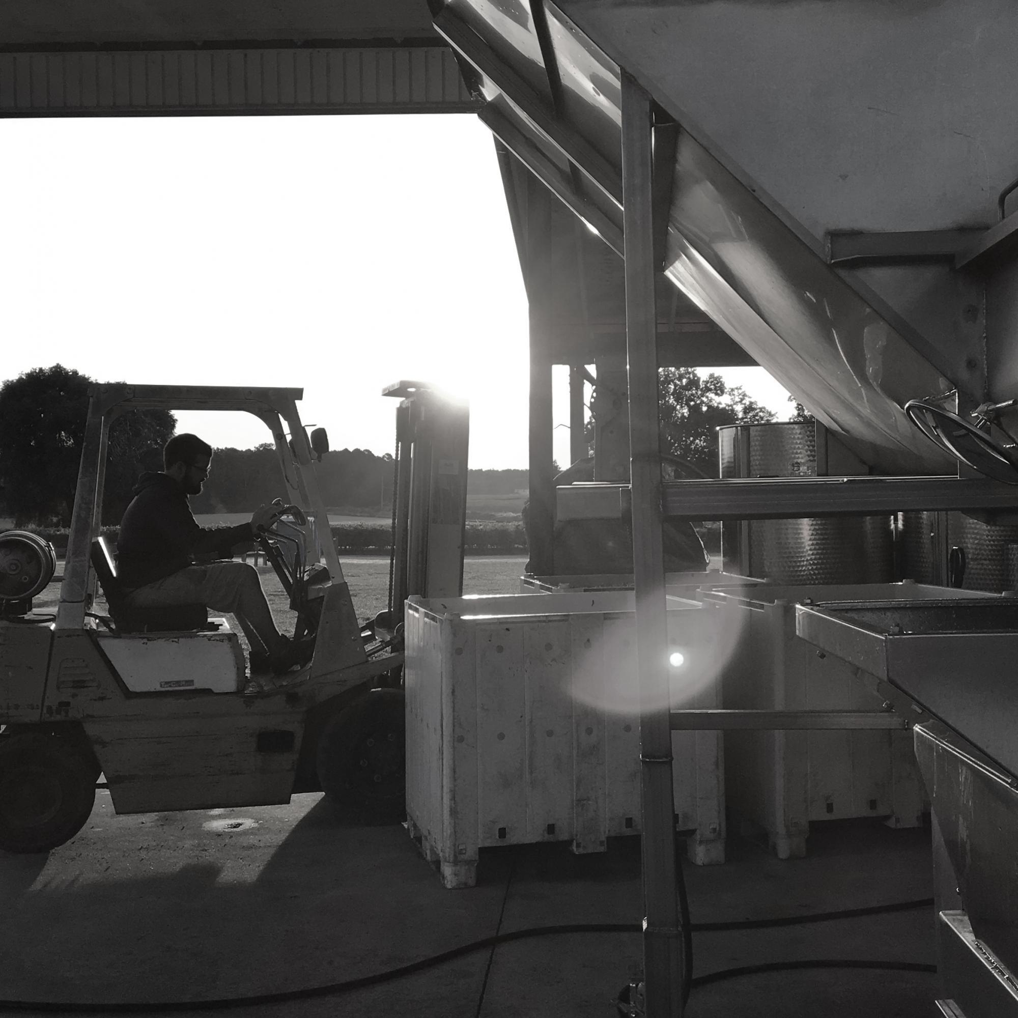 ForkliftBW